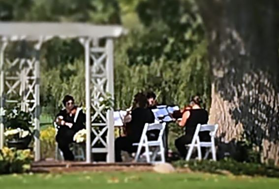 Rondo String Quartet playing at an outside wedding, Michigan. www.RondoStringQuartet.com