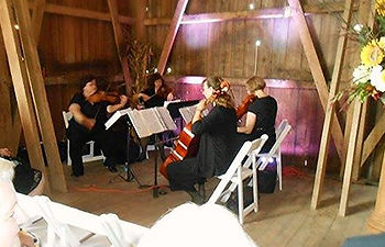 Rondo String Quartet, rustic wedding, Ann Arbor