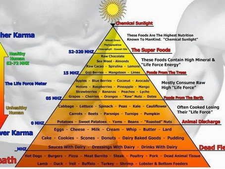The Science Behind High Vibrational Foods