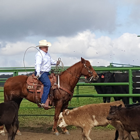O'Neill family's 130-year-old 23,000 acre of land remain devoted to Cowboy ranching.