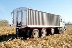 Grain Body II