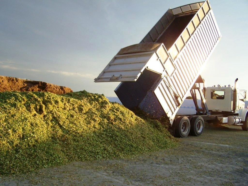 Silage Feature Dump