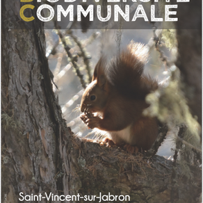 Publication du livret de l'ABC de Saint-Vincent
