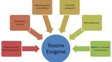 Ferrara ,tossine ed inestetismi estetici