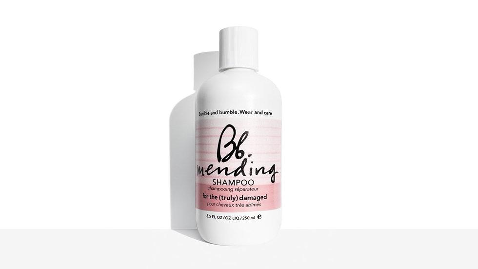 Mending Shampoo