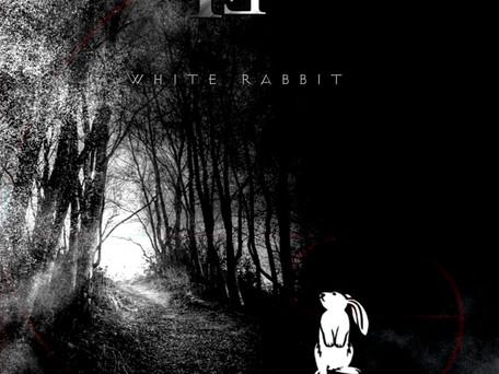 "NEW Single, ""white Rabbit"""
