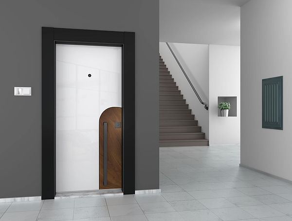 ivrati входна врата 5.jpg