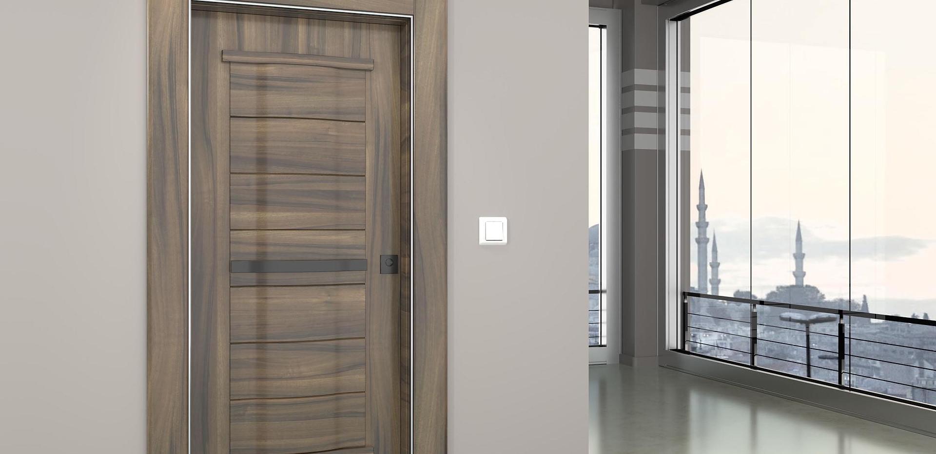 ivrati входна врата 2.jpg