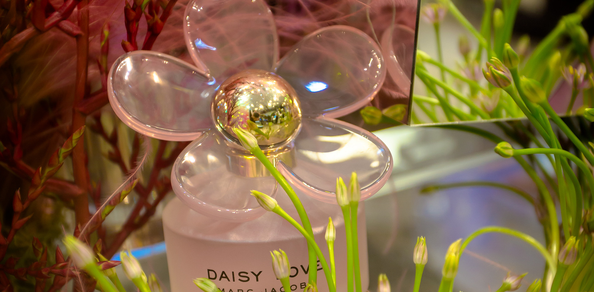 MJ Daisy bottle shot from Flower show, Macy's HSQ