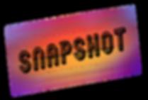 snapshot.png