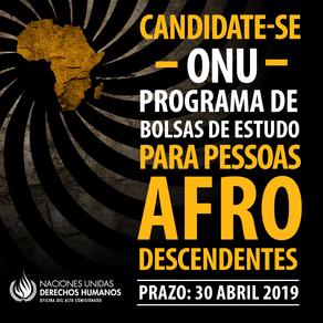 Programa de bolsas de estudo da ONU para afrodescendentes recebe inscrições