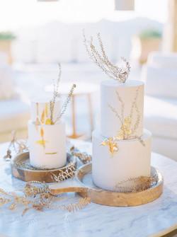 trynhphoto-malibu-los-angeles-wedding-ro