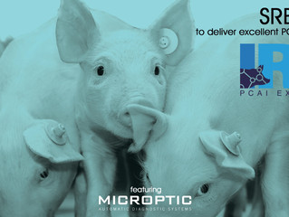 Advanced Swine Reproduction Evaluation