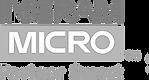 Boley Group, Ingram Micro Partner