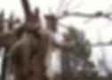 sculpture jardin extérieur laure duquesne sculpteur angers