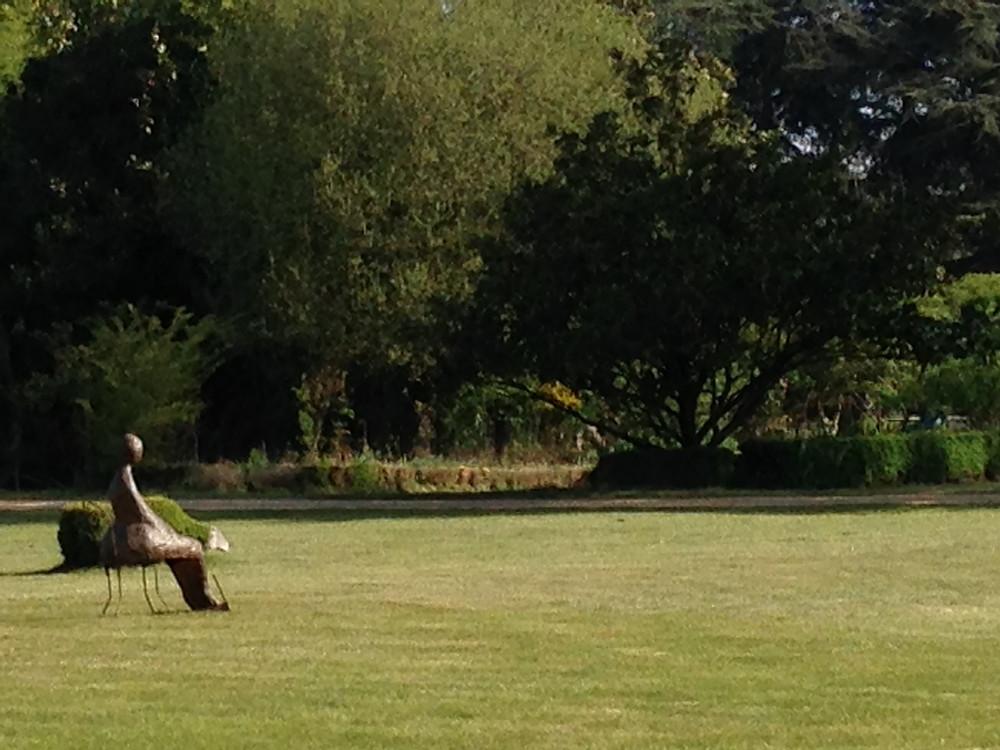 """Au milieu de cette étendue verte, contemplant le château et son parc, """"dame rouille"""" se plait à admirer les jeux d'éclairage tout au long de la journée."""