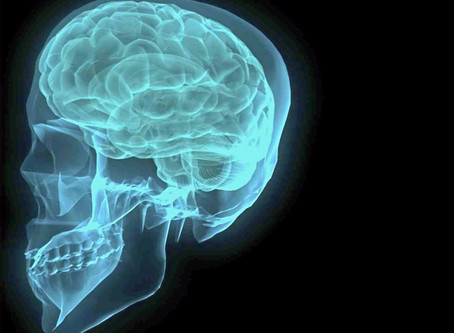 Healing the Brain: Drug's Effects on the Brain Results in a Need for Long-Term Recovery