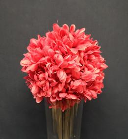 pink daisy ball