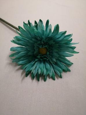teal daisy
