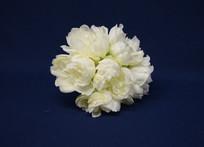 white peonies bouquet