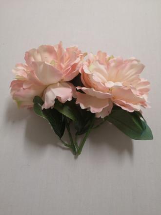 blush pink peoni