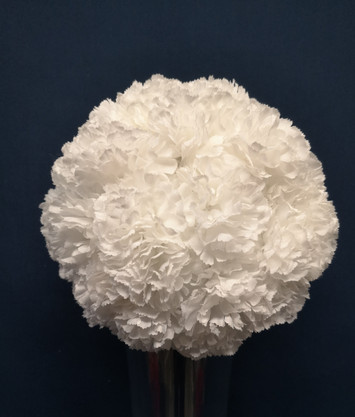 white carnation ball