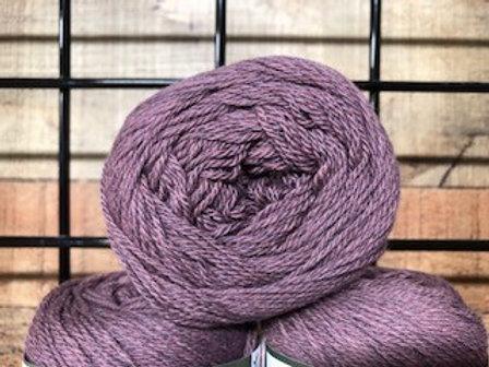 Queensland United Lavender