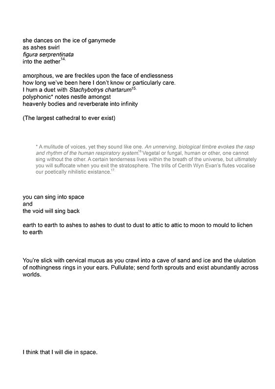 page10 copy.jpg