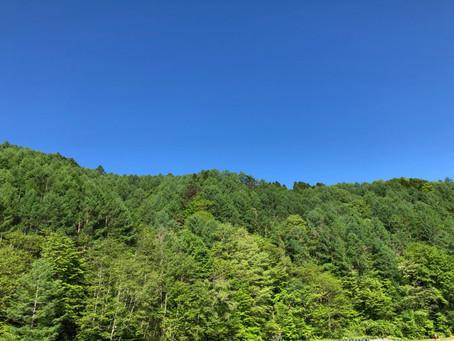 南信州の青空