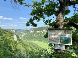 Ausblick vom Eichfelsen