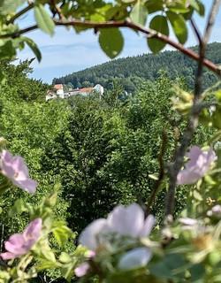 Ausblick auf Wildenstein