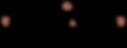 Logo_Bonvivant copie.png