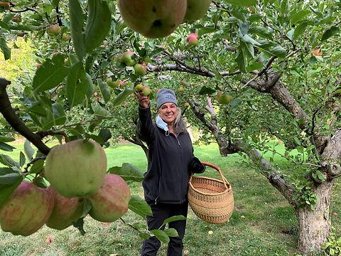 jo ann in apple orchard.JPG