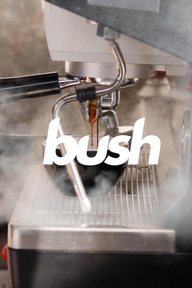 bush.png