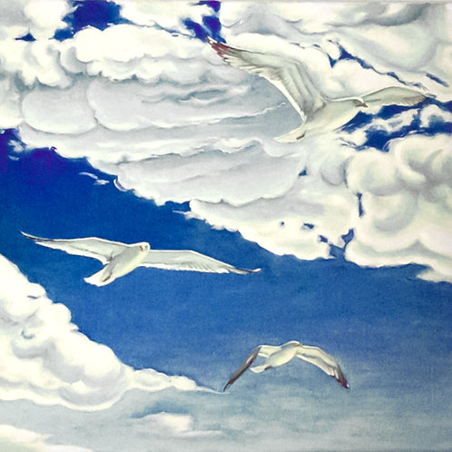 Gulls Flying High