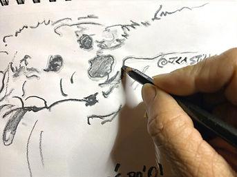 Pencil sketching Ule' Po' O!  Puppy.