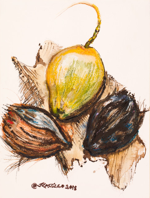 3 Coconuts