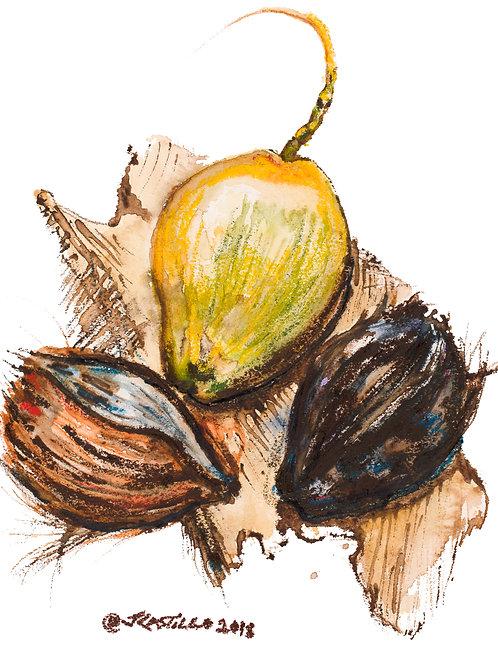 3 Coconuts, HI