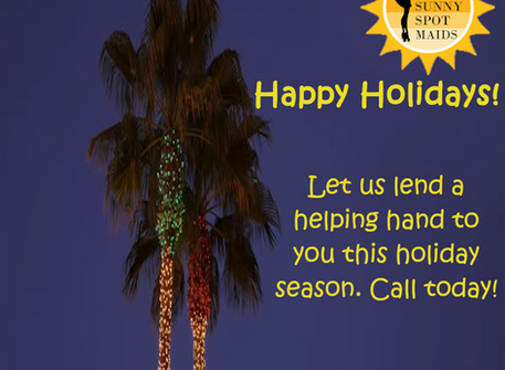 Professional cleaning service for the Holiday season!