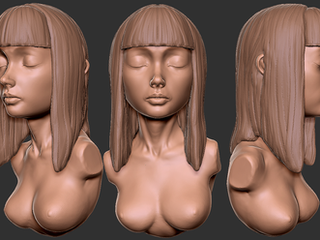 Sculpting & Modeling