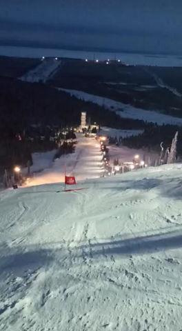 Чемпионат СЗФО по горным Лыжам.