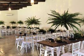 Gracelands Tropical setup 7.JPG