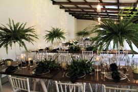 Gracelands Tropical setup 12.JPG
