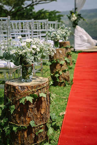 Maryna & Ryan Wedding (picture 12).jpg