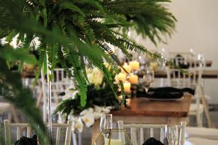 Gracelands Tropical setup 6.JPG