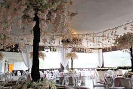 Lihle & Siphesihle Wedding 20.JPG