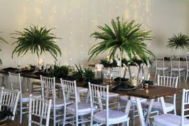 Gracelands Tropical setup 15.JPG