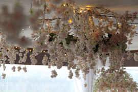 Lihle & Siphesihle Wedding 9.JPG