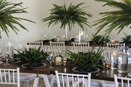 Gracelands Tropical setup 8.JPG