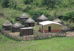 SD house